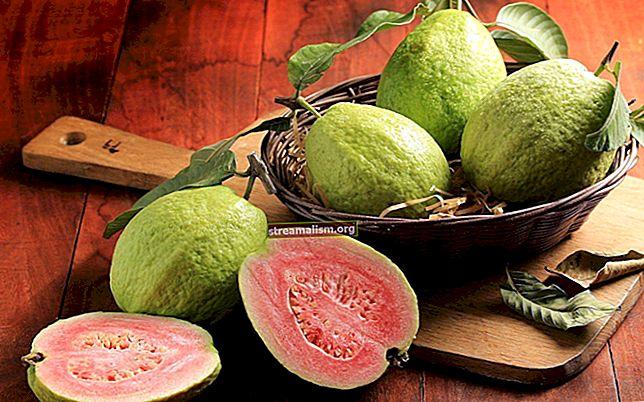 Guava - pridružite se i podijelite kolekcije
